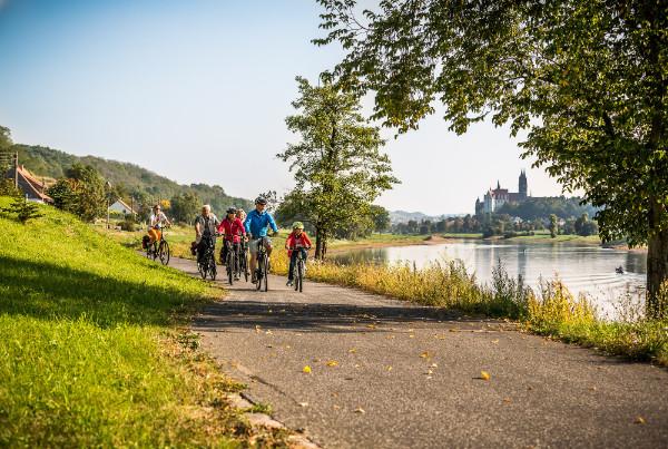 La Via ciclabile dell'Elba in Sassonia attraversa la zona vinicola di Meissen e Radebeul. © Achim Meurer/ TMGS