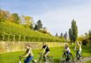 Francoforte in bicicletta: itinerari in città e nei dintorni